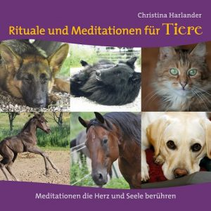 CD-Cover_front_RitualeTier_1-2015